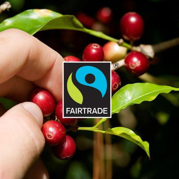 Capsule Gourmesso - Fairtrade